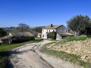 Foto - Casale Contrada San Donato, Recanati