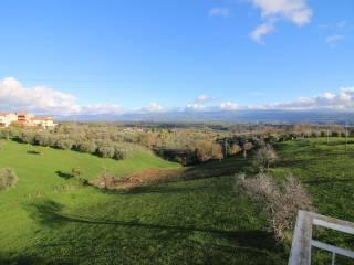 Foto - Appartamento via Monsignor Francesco Pititto, Mileto