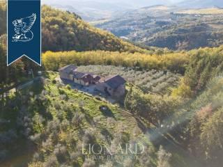Casale toscano in vendita vicino a Firenze Image 4