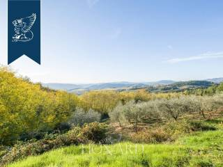 Casale toscano in vendita vicino a Firenze Image 10