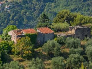 Foto - Rustico Località Case Magauda, Camporosso