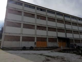 Immobile Affitto Montegranaro
