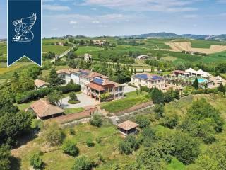 Immobile Vendita Vignale Monferrato