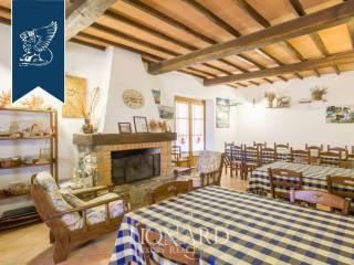 Agriturismo in vendita in provincia di Grosseto Image 20