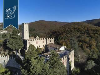 Antico castello in vendita in Toscana Image 5