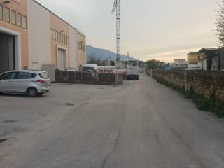 Immobile Affitto Casalnuovo di Napoli