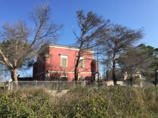 Foto - Villa unifamiliare Complanare Sud, Montaltino - Canne, Barletta