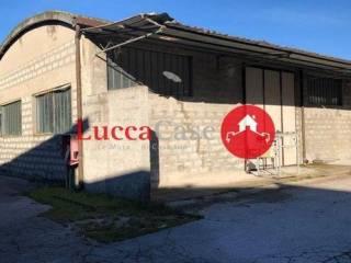 Immobile Affitto Borgo a Mozzano