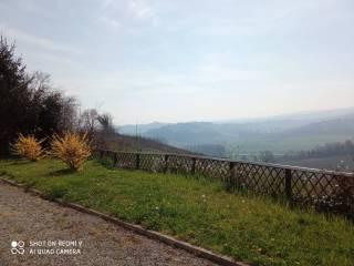 Foto - Cascina, ottimo stato, 320 mq, Villa, Isola d'Asti