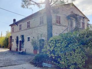 Foto - Casale, buono stato, 250 mq, Petritoli