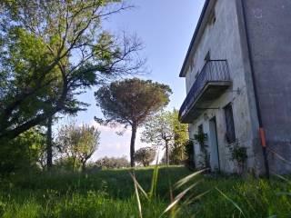Foto - Terratetto unifamiliare Contrada Embricera, Casalbore