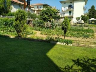 Foto - Villa unifamiliare via Donato Bramante, Stella, Monsampolo del Tronto