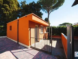Foto - Open space via della Pedica 1, Centro, Grottaferrata