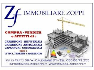 Immobile Affitto Montale