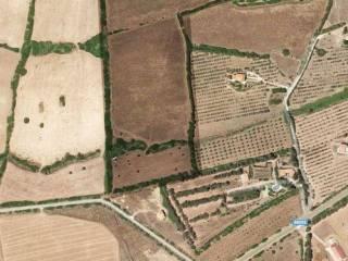 Photo - Country house 55680 sq.m., Cuglieri