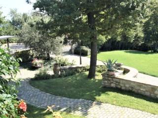 Foto - Villa unifamiliare, ottimo stato, 400 mq, Sasso Marconi