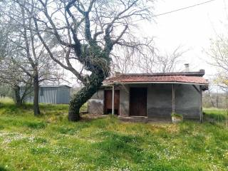 Foto - Villa unifamiliare Strada Poggio Vezza 2, Vitorchiano