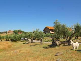 Foto - Villa plurifamiliare Strada Provinciale Settevene, Nepi