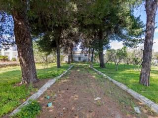 Foto - Villa unifamiliare viale Caduti di Nassiria 68, Centro, Nardò