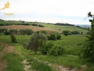 Foto - Rustico, da ristrutturare, 245 mq, Ripe, Trecastelli