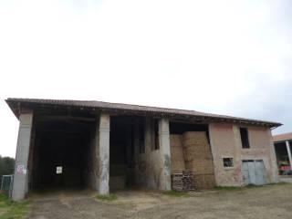 Foto - Rustico , a pochi km dal paese, casolare da ristrutturare o, Via Nuova, Medicina