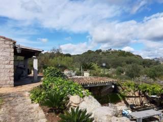 Foto - Villa unifamiliare SAN PANTALEO San c, Santa Teresina, Arzachena