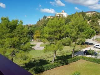 Foto - Appartamento buono stato, primo piano, Centro, Appignano del Tronto