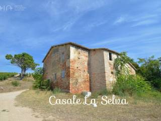 Foto - Rustico Contrada Palazzi, Centro, Spinetoli