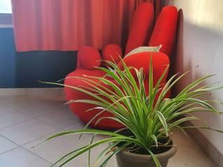 Photo - Single family villa, good condition, 115 sq.m., Cabras