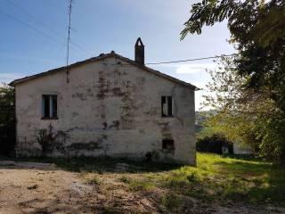 Foto - Casale Contrada San Pietro, Staffolo