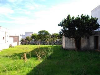 giardino con deposito
