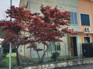 Foto - Villa bifamiliare via Umberto I, Centro, Adria