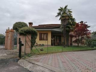 Foto - Terratetto unifamiliare vicolo roma 66, Centro, Polesella