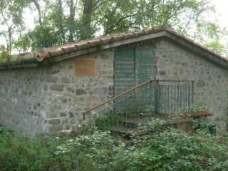 Foto - Terreno agricolo, stalla / scuderia all'asta via 2 Giugno, Follo