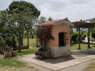 Foto - Casa colonica, buono stato, 200 mq, Mugnano, Perugia