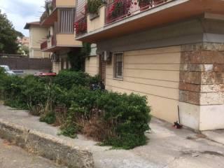 Immobile Vendita Santa Marinella