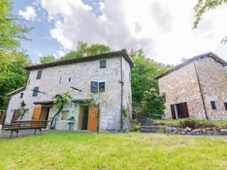 Foto - Casa colonica, ottimo stato, 600 mq, San Benedetto Val di Sambro