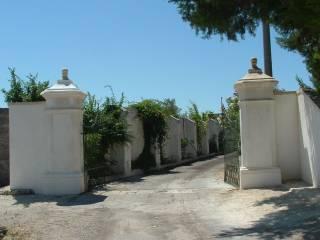 Foto - Quinta via Tunisi, Centro, Galatone