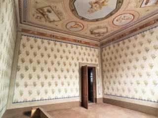 Immobile Affitto Lucca