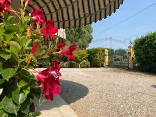 Foto - Villa unifamiliare, ottimo stato, 250 mq, Piazzola sul Brenta