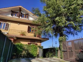Foto - Appartamento da ristrutturare, primo piano, Frascati
