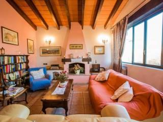 Foto - Casale Strada Quattro Ville, Ganaceto - Lesignana, Modena
