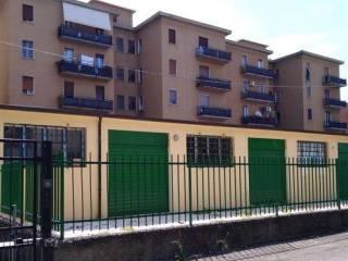 Immobile Affitto Parma  8 - San Pancrazio, Pablo, Prati Bocchi, Ospedale Maggiore