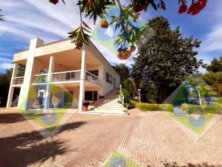 Foto - Villa bifamiliare Strada Comunale Torre Due Pani, Castellana Grotte