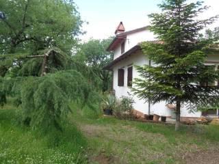 Foto - Villa unifamiliare Oliveto, Civitella in Val di Chiana