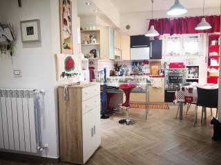 Foto - Appartamento zona Telamonio, Barbanella - Verde Maremma, Grosseto
