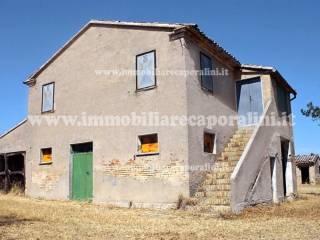 Foto - Casa colonica Contrada Montefiore, Recanati