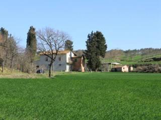 Foto - Rustico, da ristrutturare, 300 mq, Cortona