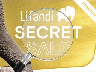 2285 21 lifandi bild secretsale gold