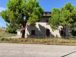 Foto - Casa colonica Strada Provinciale, Montegiorgio